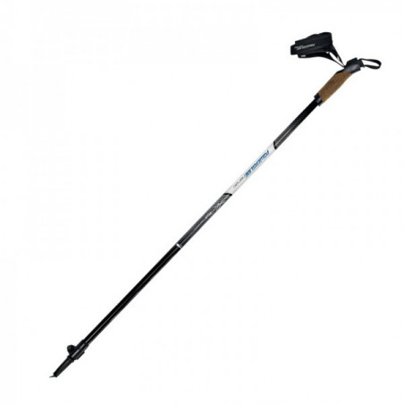 Powerslide Adjustable Nordic Poles